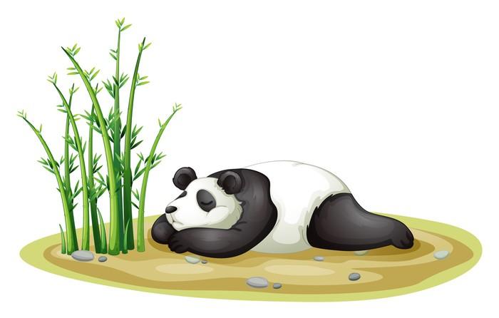 Vinylová Tapeta Panda - Nálepka na stěny