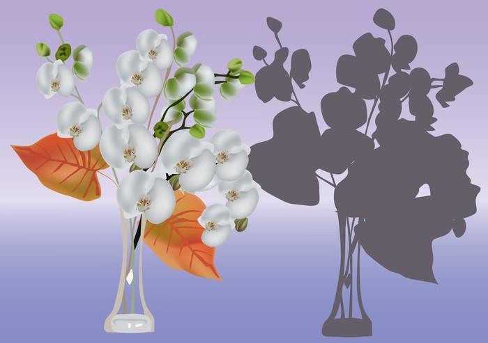 Vinylová Tapeta Bílá orchidej pobočky ve váze - Květiny