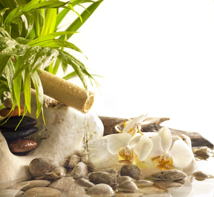 Zen Live Wallpaper: Orchids And Zen Stones With Falling Water Spa Concept