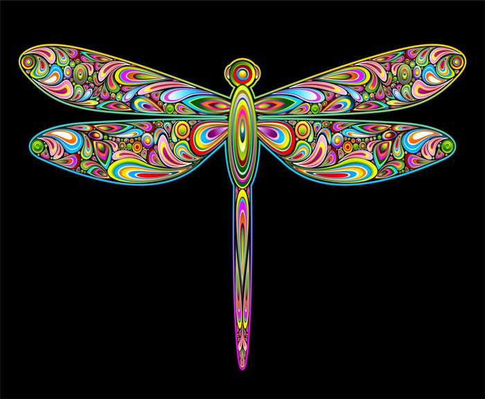 Dragonfly psychedelic art design libellula insetto for Pixers your walls and stuff