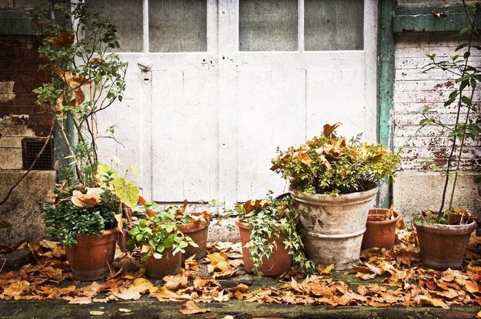 sticker pots de fleur terrasse rustique pixers nous. Black Bedroom Furniture Sets. Home Design Ideas