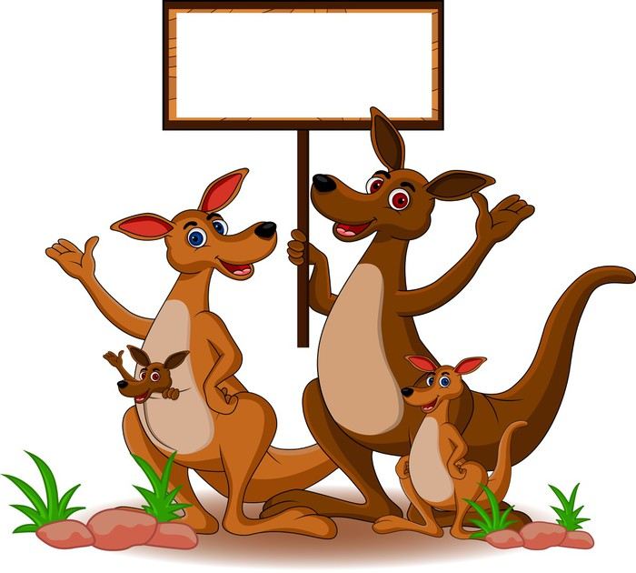 Carta da parati canguro divertente cartone animato di