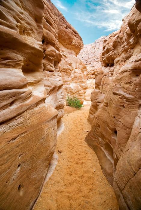Vinylová Tapeta Barevný kaňon, Sinaj (Egypt) - Afrika