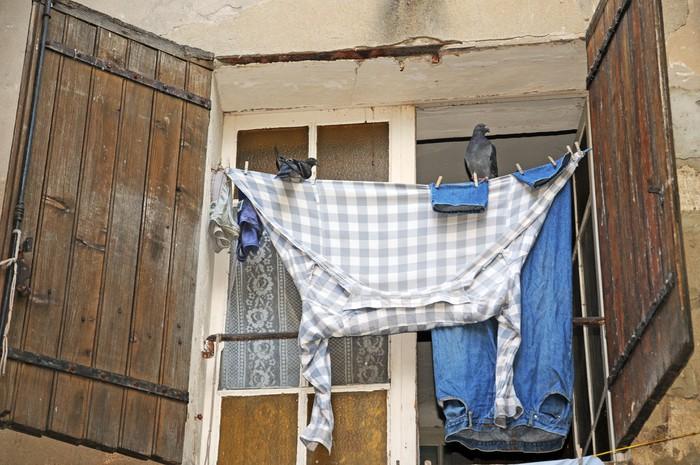 papier peint oiseaux assis sur la corde linge avec lessive fra che pixers nous vivons. Black Bedroom Furniture Sets. Home Design Ideas