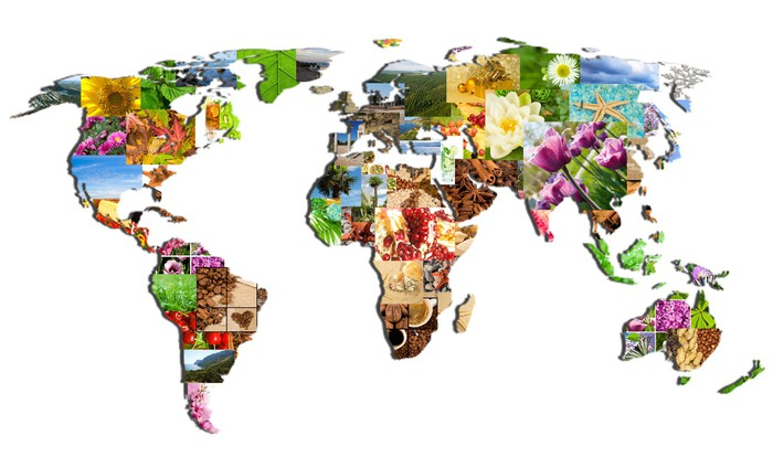 Vinilo pixerstick mapa del mundo de las muchas fotograf as for Vinilo mapa del mundo
