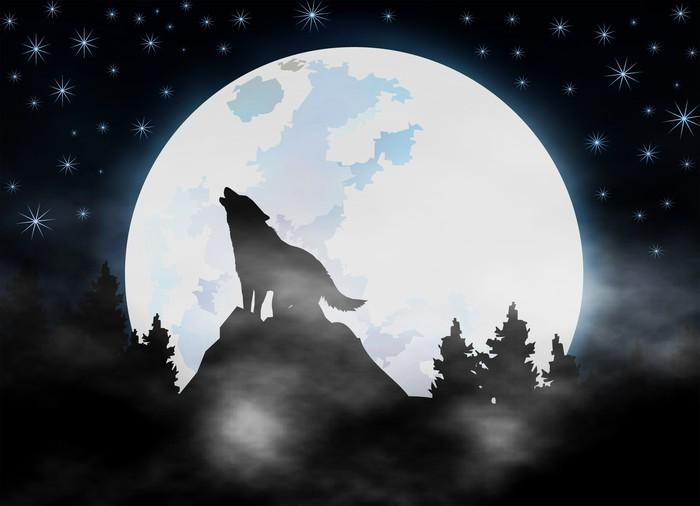 fototapete heulender wolf im dunkeln wald dunklen nebel. Black Bedroom Furniture Sets. Home Design Ideas