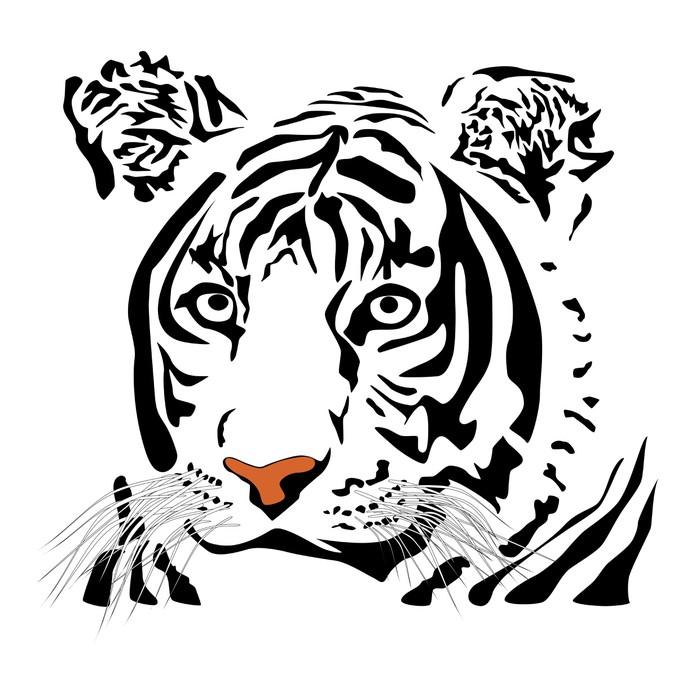 Fototapete Tiger • Pixers® - Wir leben, um zu verändern