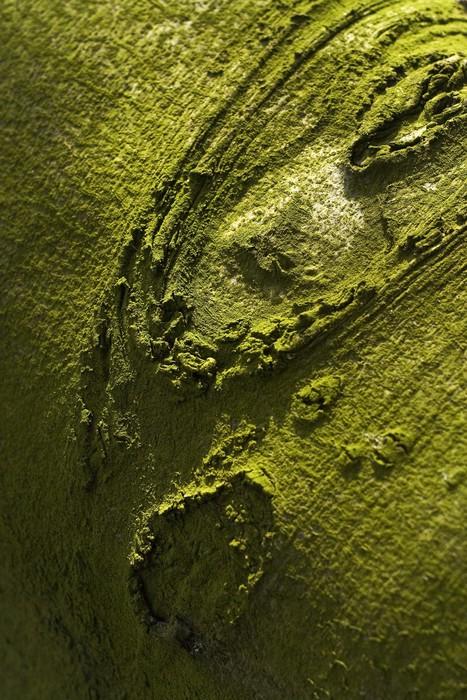 Papier Peint Vinyle Arbre - Textures