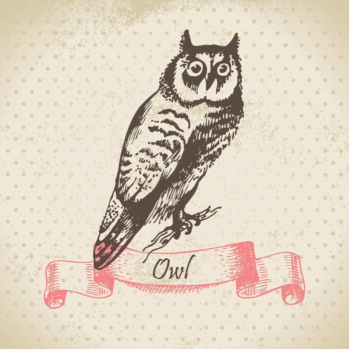 Papier peint oiseau de hibou illustration dessinee a la for Kitchen cabinets lowes with poser papier peint