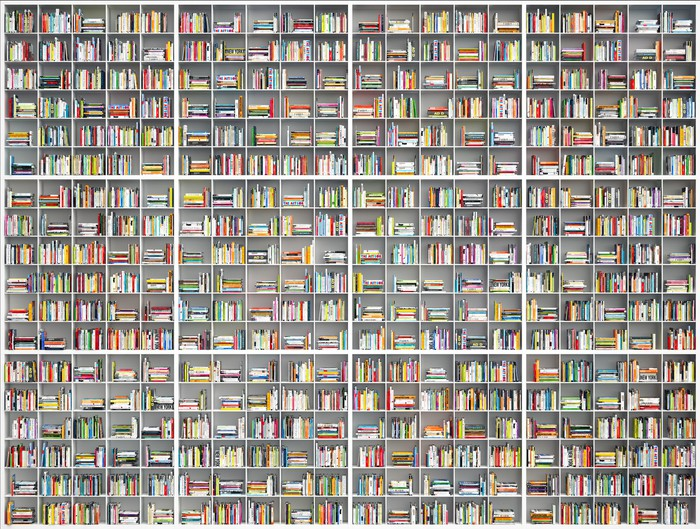 riesiges Bcherregal - giant huge bookshelf Vinyl Wall Mural - Library