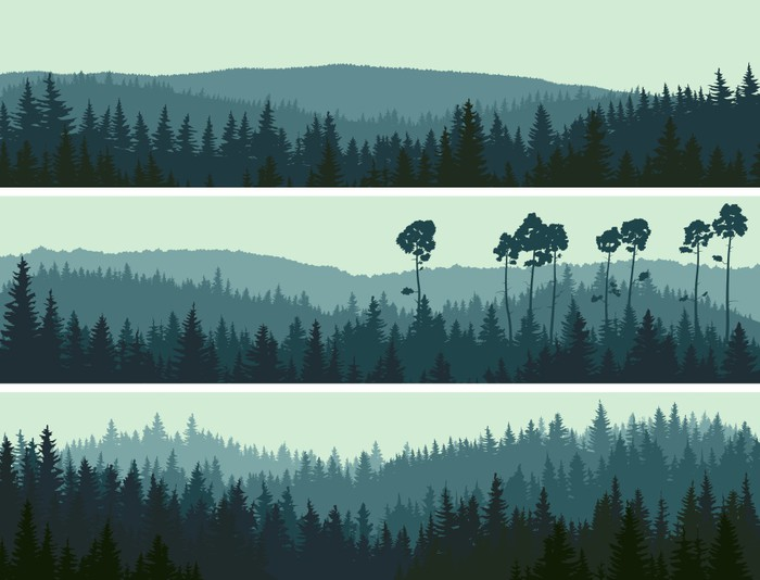 Horizontal Banners Of Hills Coniferous Wood Wall Mural