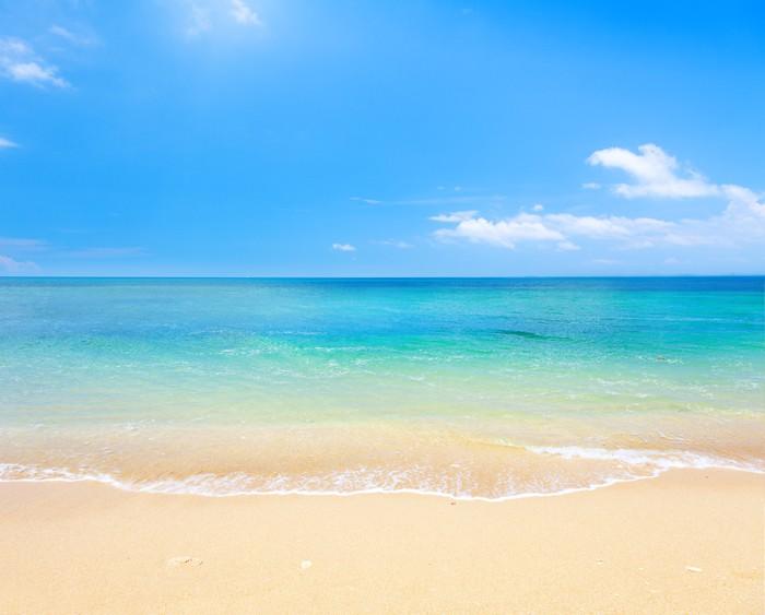 fototapete strand und tropischen meer • pixers®  wir