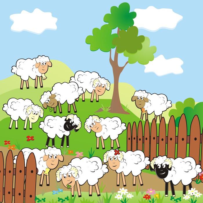 Vinylová Tapeta Ovce - Savci