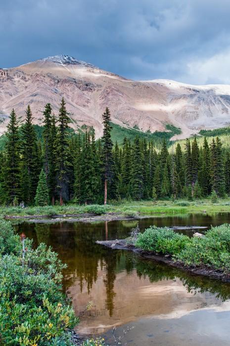Vinyl-Fototapete Berglandschaft mit kleinen Teich in Banff Nationalpark - Wasser
