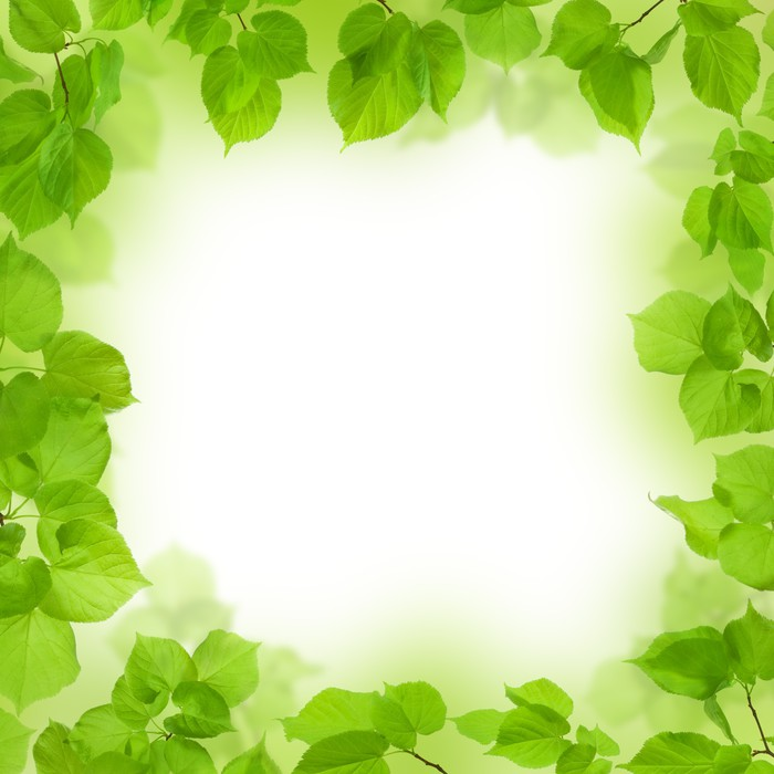Vinilo Pixerstick Marco de hojas verdes, follaje de fondo • Pixers ...