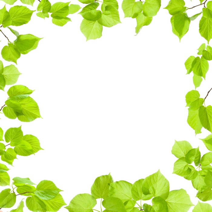 Vinilo Pixerstick Marco verde de las hojas aisladas en blanco, borde ...