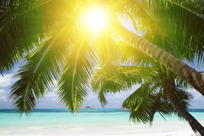 Vinylová Tapeta Bílé korálové pláže písek a azurově Indického oceánu. - Prázdniny