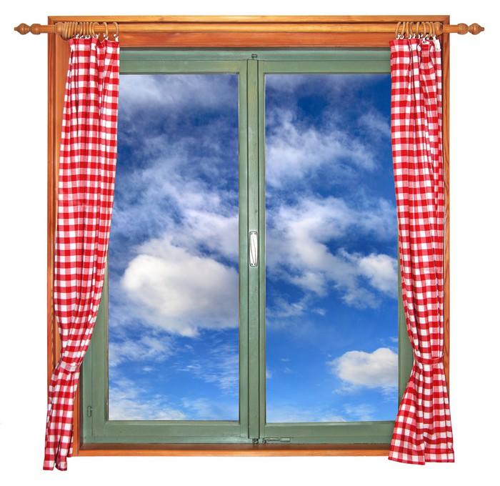 Vinylová Tapeta Zelená window1 -