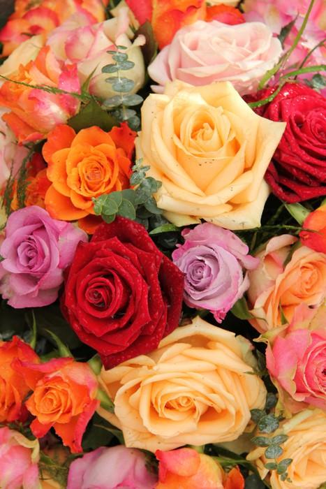 Vinylová Tapeta Barevné kytice - Květiny