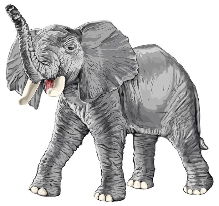 fototapete elefant mit erhobenem r ssel pixers wir. Black Bedroom Furniture Sets. Home Design Ideas