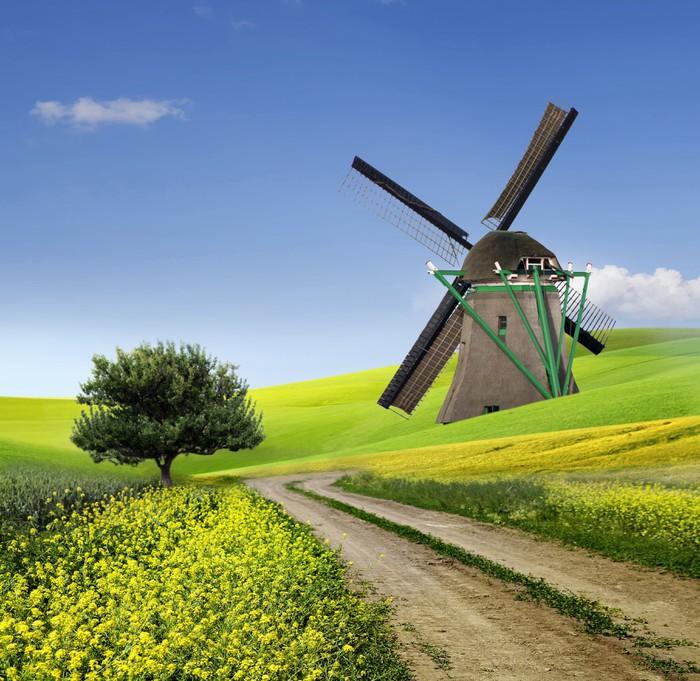 Vinylová Tapeta Tradiční větrný mlýn v krajině - Rostliny