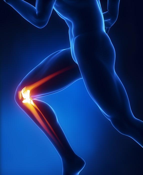 Vinilo Pixerstick Anatomía corriente del hombre de rodilla • Pixers ...