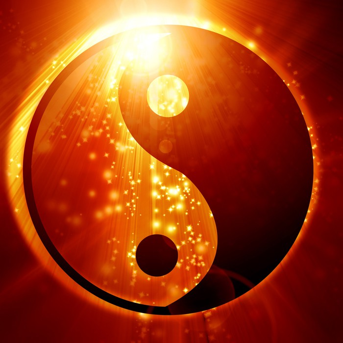 Yin Yang Sign Wall Mural Pixers 174 We Live To Change