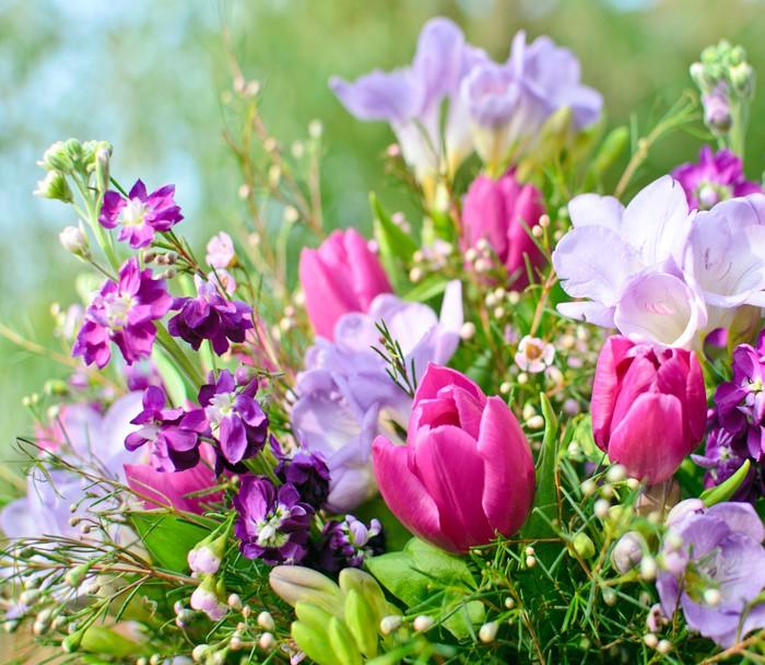 Vinylová Tapeta Spring Awakening: Květiny sen ve fialové a růžové - Slavnosti
