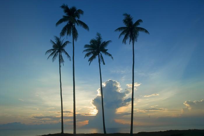 Vinylová Tapeta Východ slunce na Kuantanu Pahang Malajsie - Asie