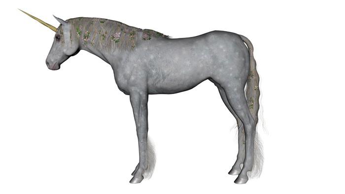 Vinylová Tapeta Unicorn - Imaginární zvířata