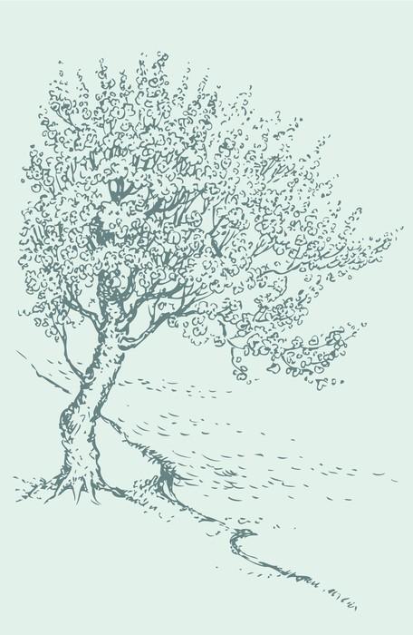 Vinylová Tapeta Vector sketch kvetoucí jarní strom na břehu řeky - Roční období