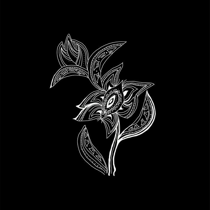 Vinylová Tapeta Bílý květ - Květiny