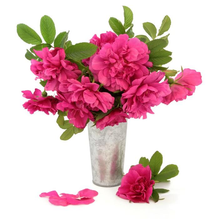 papier peint rugosa rose fleurs pixers nous vivons pour changer. Black Bedroom Furniture Sets. Home Design Ideas