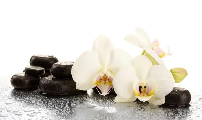tableau sur toile spa pierres et de fleurs d 39 orchid e isol sur blanc pixers nous vivons. Black Bedroom Furniture Sets. Home Design Ideas