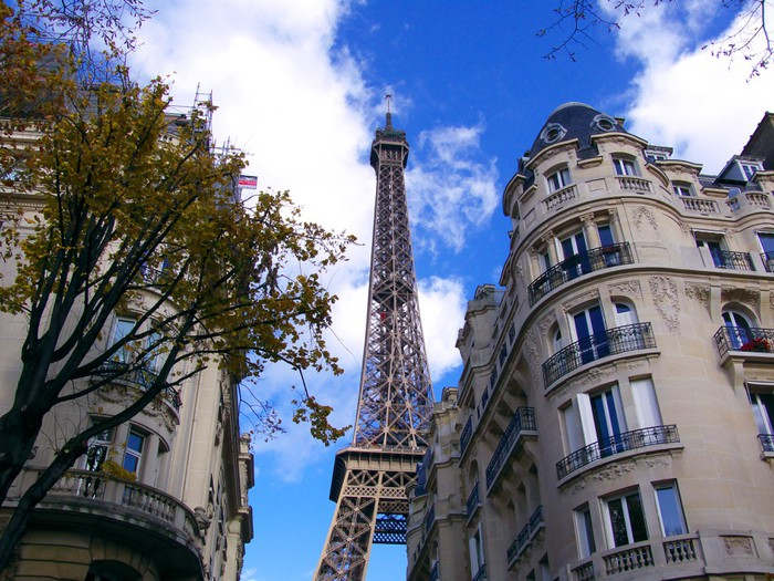Vinylová Tapeta Immeubles de Pierre devant la Tour Eiffel, Paříž - Evropská města