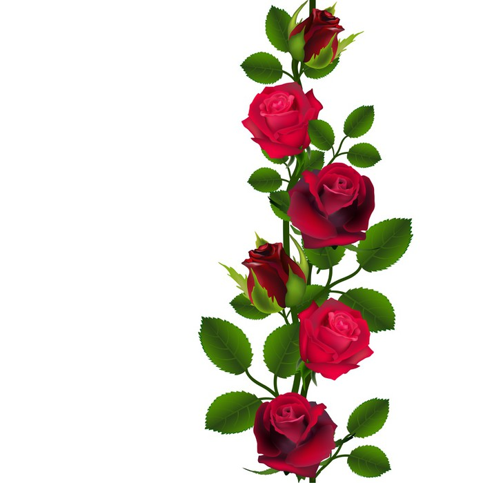 Seamless Vector Red Roses Pattern Vertical Wall Mural