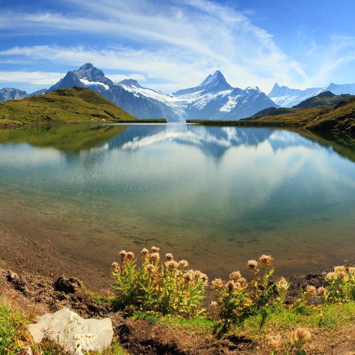 papier peint montagne des alpes suisses lac grindelwald pixers nous vivons pour changer. Black Bedroom Furniture Sets. Home Design Ideas