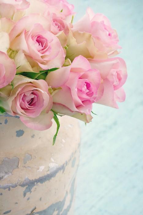 Papier peint roses dans un seau en m tal shabby chic pixers nous vivons pour changer - Papier peint shabby chic ...