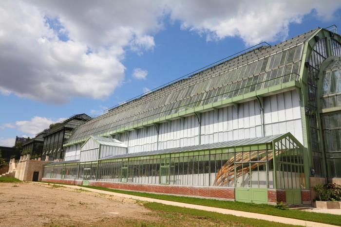 Jardin des Plantes greenhouse in Paris, France Vinyl Wallpaper - European Cities