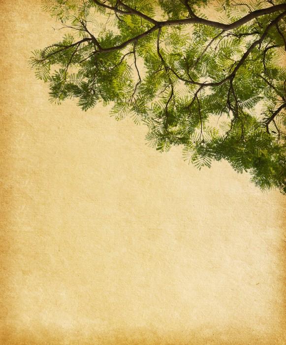 Vinylová Tapeta Starý papír s listy tropického stromu - Struktury