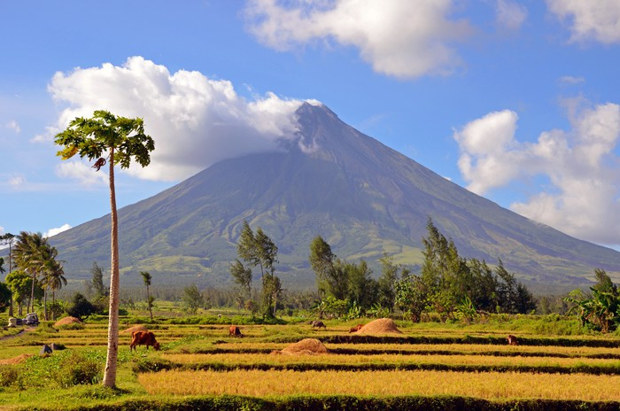 mayon volcano in the philippines wall mural � pixers174 � we