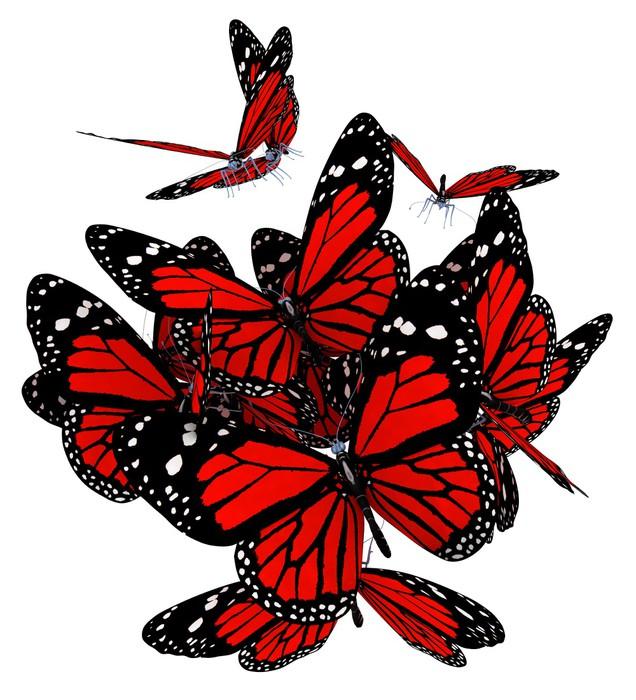 Vinylová Tapeta Červené motýli na bílém pozadí - Roční období