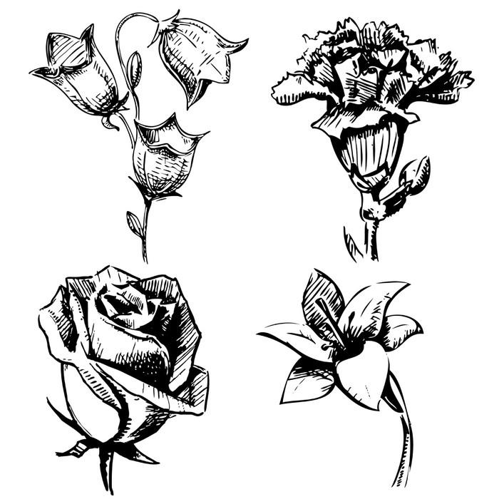 Vinylová Tapeta Kolekce květin - Květiny