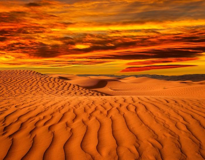 Vinylová Tapeta Desert severní Afriky, písečné barkhans - Témata
