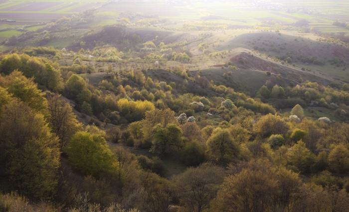 Vinylová Tapeta Ráno krajina se zelenými stromy a kopce na jaře - Roční období