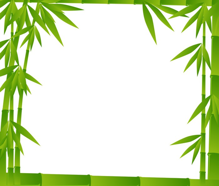 Vinilo Pixerstick Bambú ramas verdes marco en blanco • Pixers ...