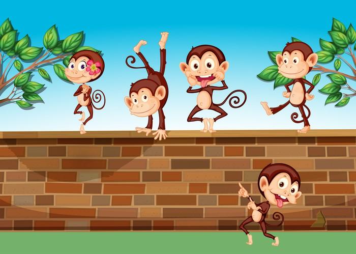 Vinylová Tapeta Pět opice hrát na plot - Savci