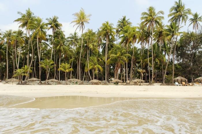 Vinylová Tapeta Pláž s bílým pískem a palmy - Asie