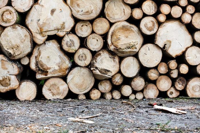 Vinylová Tapeta Holzstapel / Dřevěné pozadí - Struktury