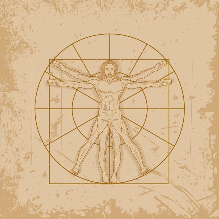 Vitruvian Man by Leonardo Da Vinci Wall Mural • Pixers® • We live to ...